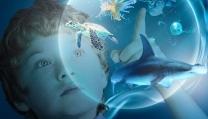Le meraviglie del mare