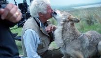 Jean Jacques Annaud e il lupo