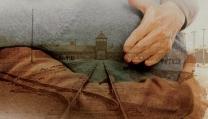 Alla ricerca delle radici del male