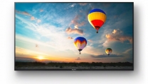"55"" BRAVIA 4K HDR Professional Display"