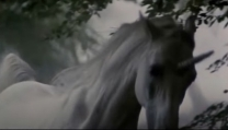 l'unicorno in Blader Runner, director's cut