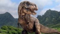 D-Rex