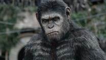 Tre cortometraggi prima di Apes Revolution - Il pianeta delle scimmie di Matt Reeves