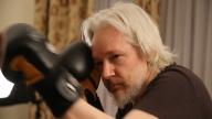 Julian Assange mette Sony K.O