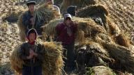 La Cina rurale fonte di ispirazione per artisti