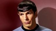 Leonard Nimoy aka Spock