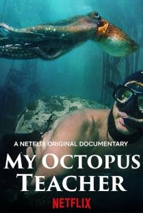 Locandina di My Octopus Teacher