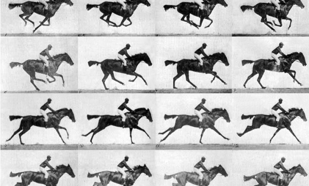 The horse in motion di Muybridge